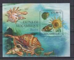 P963. Mozambique - MNH - 2011 - Nature - Fauna - Marine Life - Seashells - Bl - Pflanzen Und Botanik