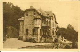 """CP De YVOIR """" Lairbois , Le Château """" - Yvoir"""