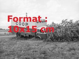 Reproduction D'une Photographie Ancienne D'un Camion COOP Accidentée Dans Un Arbre à Genève En 1962 - Reproductions