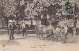 LIVERNON : Le Champ De Foire . - Livernon