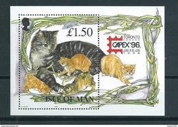 1996 Isle Of Man Complete M/Sheet Capex'96,cats,katten MNH/Postfris/Neuf Sans Charniere - Isla De Man
