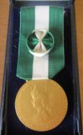 France - Médaille D'Honneur Communale, Régionale, Départementale - Attribuée - Métal Doré - Neuve En Coffret - 1996 - Professionals / Firms