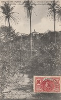 TAMARA   GUINEE FRANCAISE   ILE DE LOOS  Le Chemin Du Phare De Tamara  TB PLAN 1908 - Guinée Française