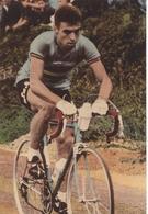 CYCLISME: CYCLISTE : SERIE COUPS DE PEDALES:RICK VAN LOOY - Cyclisme