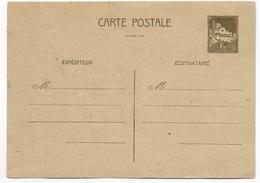 """1943 - ALGERIE - CARTE ENTIER SANS """"REPUBLIQUE FRANCAISE"""" 147x104 - ACEP N° CP21 - Lettres & Documents"""