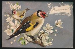 FANTASIE  RELIEF  GAUFFREE  BONE ANNEE - Oiseaux