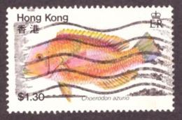 "Hong Kong  1981 -  Fish  ""Choerodon Azurio"" - Oblitérés"