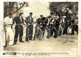 ETAT SEE SCAN EN AMÉRIQUE VOLONTAIRES DE LA POLICE BARRAGE CONTRE LES GRÉVISTES  20*15CM PHOTO PARIS SOIR - Profesiones