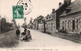 VOITURE A CHIEN-ATTELAGE DE CHIEN-BIVILLE SUR MER-76 - France