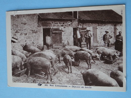 NOS CAMPAGNES -- Déjeuner Des Cochons Et Fermiers - Cochons