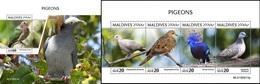 Maldives 2020, Animals, Pigeons, 4val In BF +BF - Tauben & Flughühner