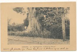 DAHOMEY , PORTO NOVO - Route De L'Hôpital - Dahomey
