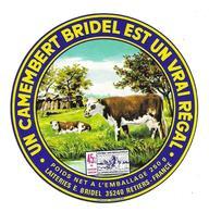ETIQUETTE De FROMAGE. UN CAMEMBERT BRIDEL Est Un Vrai Régal..Laiteries E. BRIDEL à RETIERS (35) - Kaas