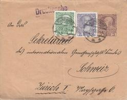Autriche Entier Postal Bande De Journal Pour La Suisse 1919 - Entiers Postaux