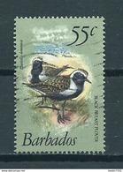 1981 Barbados Birds,oiseaux,vogels Used/gebruikt/oblitere - Barbades (1966-...)