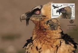 Spain 2019 - Europa C.E.P.T. Birds Maxicard - 1931-Hoy: 2ª República - ... Juan Carlos I