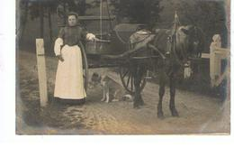 CPA Fermière Partant Au Marché Avec Son âne Attelé Et Son Chien - Attelages