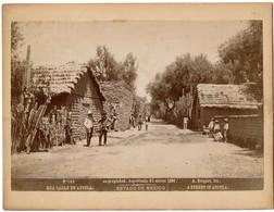 1896 - Mexico - Estado De Mexico - Una Calle En Ayotla - A Street In Ayotla - N° 140 - Foto A. Briquet - 2 Scans - Foto