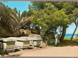 Italy & Circulated, Caprera, Tomba Dell'Eroe,  La Maddalena A Le Havre  France 1975 (4) - Andere Steden
