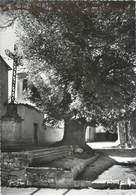 """/ CPSM FRANCE 04 """"Le Revest Du Bion, L'Ormeau"""" - Francia"""