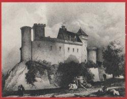 Publicité Médicament  ; Pharmacie ; Médecine ; Nuclevit B12 ( Chateau Castenau-Bretenoux ) LOT - Advertising