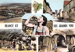 89 .n° 21822 . Irancy . Vin .vendage .ses Grands Vins .vue D Ensemble . Cpsm.10.5 X 15cm . - Andere Gemeenten
