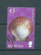 2002 Bermuda 45 Shell,sealife Used/gebruikt/oblitere - Bermudes