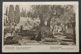 Palestine Jerusalem Garden Gethsemane 1934 Pictorial - Palestine