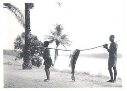 Photo Afrique 12,8 X 17,8 Cms, AEF, Moyen Congo - Capitaine Capturé à Ouesso, Ellebé 1944 - Afrique
