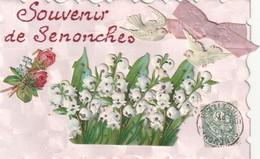 Souvenir De Senonches  (superbe Carte Avec Découpis Et Ruban.) - France