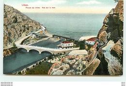 LIBAN - Fleuve Du Chien - Vue Sur La Mer - Líbano