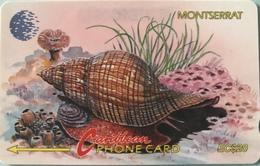 "MONTSERRAT  -  Phonecard  - Cable § Wireless ""  -  "" Fasciolaria Tulipa ""  -  $20 - Montserrat"
