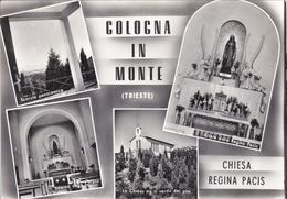 2210  - TRIESTE - COLOGNA IN MONTE 4 VEDUTE - Italien