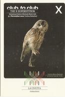 670/FG/20 - THE X SUPERSTITION - International Festival Of Electronic Music Art - Da Identificare