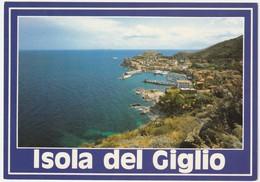 ISOLA DEL GIGLIO - GROSSETO - IL PORTO -45514- - Italia