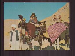 AFGHANISTAN NOMADES KUCHI - Afghanistan