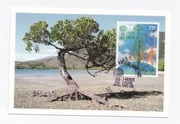 CM DE NOUVELLE-CALEDONIE DE 2012 - 1 JOUR 1 ARBRE UNE VIE - Cartes-maximum