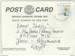 TZS18501 Tanzania 1999 Advertising Postcard Franking Roses / Addreesd Egypt - Tanzania (1964-...)