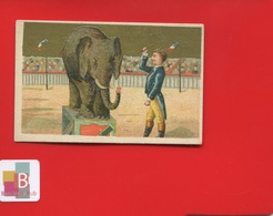 Paris Laurent Rue LA Fayette Meubles Occasion Jolie Chromo Dorée Cirque Dompteur Elephant - Autres
