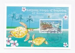 CM DE NOUVELLE-CALEDONIE DE 2011 - TORTUE - Cartes-maximum
