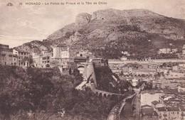 Monaco Le Palais Du Prince Et La Tete De Chien - Sonstige