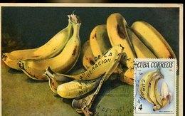 51502 Cuba, Maximum 1966    Bananas  Bananen - Fruits