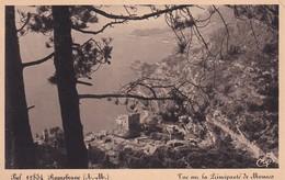 Monaco Roquebrune Vue Sur La Principaute De Monaco - Sonstige