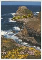 {37877} 29 Finistère Cleden Cap Sizun , La Pointe Du Van : Le Rocher De Morgane - Cléden-Cap-Sizun