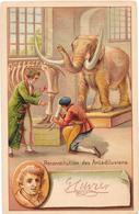 CHROMO Illustrée - Reconstitution Des Antidiluviens De CUVIER - Historia