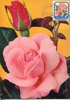 51524 New Zealand  Maximum  1976 , Rose  Rose Elizabeth - Roses