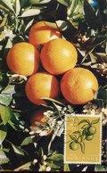 51538 Suriname, Maximum 1961 Oranges  Orange  Orangen - Frutta