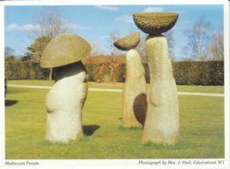Postcard - Mushroom People Photo By Mrs J. Hull - No Card No. Unused Very Good - Postcards