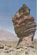 Postcard - Tenerife - Stone Tree In The Dales - Card No.245 Unused Very Good - Postcards