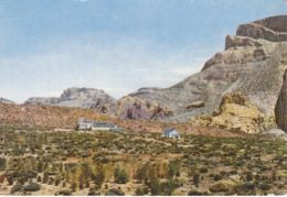Postcard - Tenerife - Tourist Residence In The Dales - Card No.205 Unused Very Good - Postcards